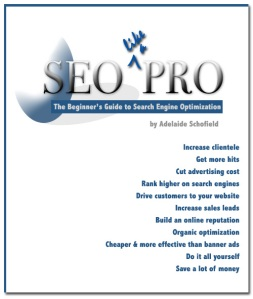 Learn SEO like a PRO
